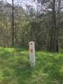 23.56 Acres Way - Photo 6