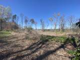 354 Cove Mtn Rd - Photo 9