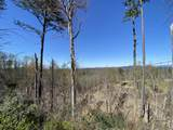 0 Cove Mountain Rd Rd - Photo 2