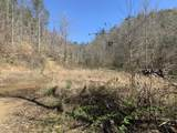 +-173.7 ac Middle Creek Rd - Photo 5