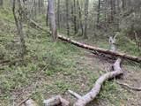 00 Steer Creek Rd Rd - Photo 18