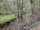 00 Steer Creek Rd Rd - Photo 21