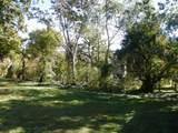 104 Woodrush Drive - Photo 28