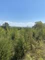Smoky View Estates Drive - Photo 10