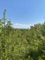 Smoky View Estates Drive - Photo 9