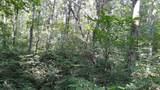 239 Brooks Gap Rd - Photo 9