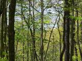 +-.54 Acre Van Stowe Rd - Photo 22