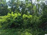 Lot 14 Panther Springs Rd - Photo 2