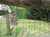 3557 Deer Foot Way - Photo 7