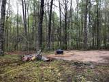 110 George Young Rd - Photo 21