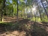 510 Wild Ivy Way - Photo 3