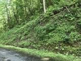 Black Walnut Flats Rd - Photo 1