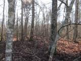Lot 4 Mountain Ash Drive - Photo 10