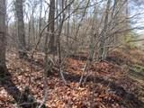 Lot 4 Mountain Ash Drive - Photo 12
