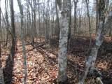 Lot 4 Mountain Ash Drive - Photo 8
