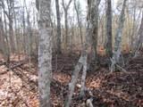 Lot 4 Mountain Ash Drive - Photo 9
