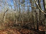 15 Mountain Ash Drive - Photo 14
