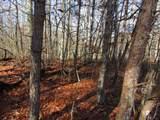 15 Mountain Ash Drive - Photo 7