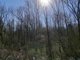 Tract 8 Indian Cave Rd - Photo 1