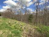Clear Fork Rd Off Rd - Photo 11
