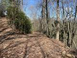 Clear Fork Rd Off Rd - Photo 3
