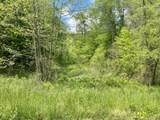 Upper Caney Valley Rd - Photo 3