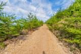 Mountain Ash Way - Photo 8