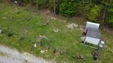 766 Taylor Hollow Rd - Photo 27