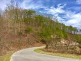 Lot 290 Bluff View Rd - Photo 5
