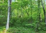 10 acres Pond Ridge Road - Photo 3