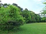 Parcel 113 White Birch - Photo 1