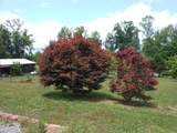 125 County Rd 405 - Photo 13