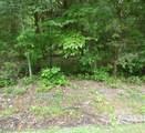 Lot 1024 Mountain View Lane - Photo 2