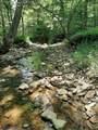 501 Lick Creek Road Rd - Photo 15