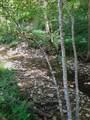 501 Lick Creek Road Rd - Photo 3