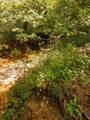 501 Lick Creek Road Rd - Photo 8