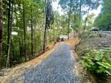 3536 Ginseng Way - Photo 9