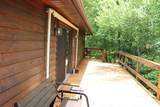 1036 Old Bald River Rd - Photo 13
