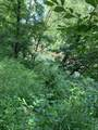 38330 Wilderness Road Rd - Photo 10