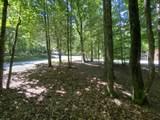 Domar Drive - Photo 1