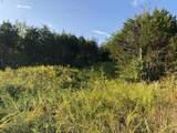 10 Acres Vista Drive - Photo 12