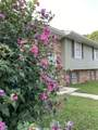 5035 Gold Pointe Drive - Photo 37