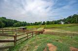 7818 Berry Williams Rd. Rd - Photo 23