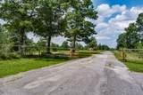 183 Flatbush Lane - Photo 14
