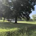 828 Old Rhea Springs Road Rd - Photo 4