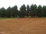 163 Meadow Lawn Drive - Photo 2
