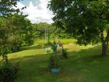 4529 Knoxville Hwy - Photo 37