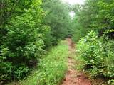 1002 County Road 480 - Photo 6