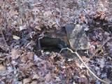 204.54ac Rock Creek Rd - Photo 28