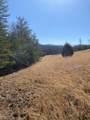 117 Shiners Bluff Drive - Photo 9